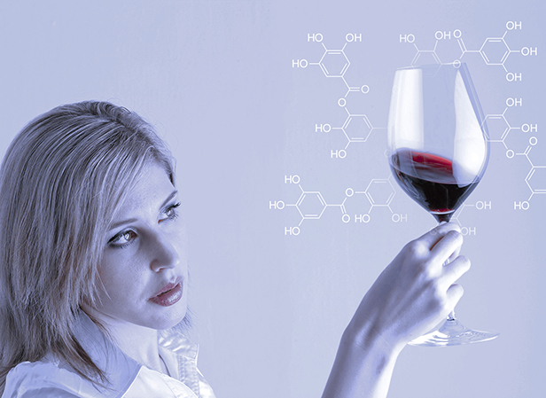 Woman holding red wine in a wine glass